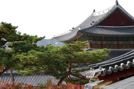 Changgyong Palace, south korea