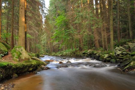 wild river in bohmen forest photo