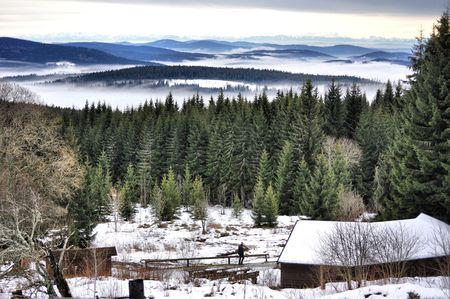 nice morning in Bohemian mountains