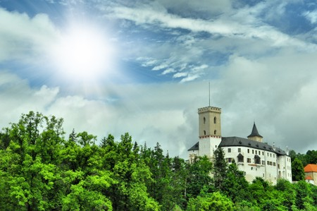 romantic castle in green forest photo