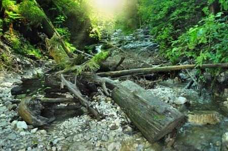 quiet scenery: nice path through slovak paradise Stock Photo