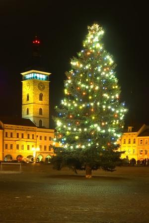 도시 광장에 크리스마스 트리 스톡 콘텐츠