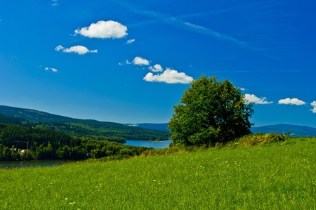 nice landscape on summery time photo
