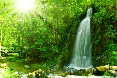 nice waterfall through green forest photo