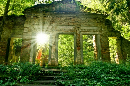 old romantic ruin in forest photo