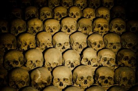 human bones: a lot of human bones