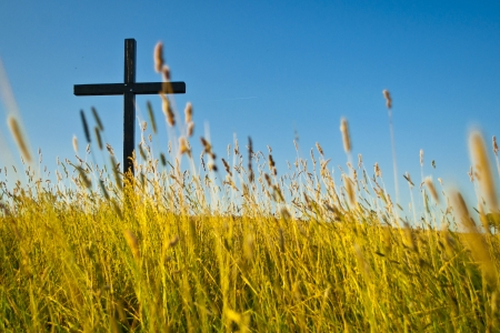 big cross on summery meadow Standard-Bild