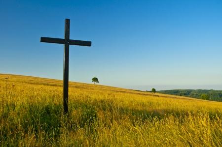여름 초원에 큰 십자가 스톡 콘텐츠