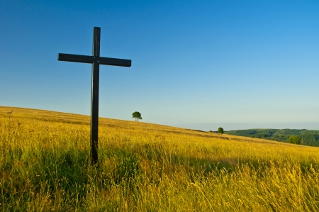 big cross on summery meadow Stock Photo