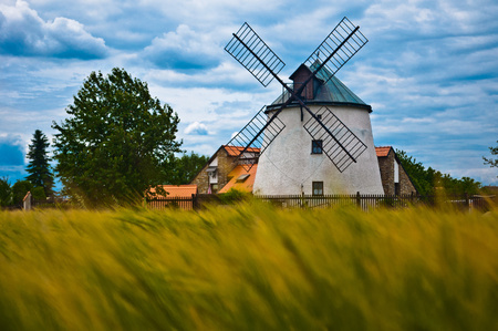 historic windmill in summery field Reklamní fotografie