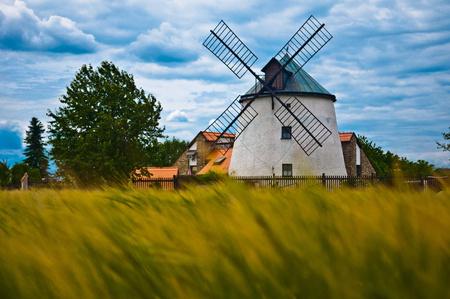historic windmill in summery field Standard-Bild