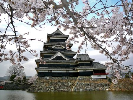Beautiful Matsumoto castle during Sakura (cherry blossom). For its dark colour this castle is also called
