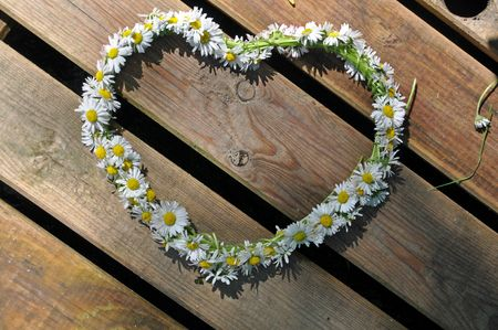 A heart made of daisies Stock Photo