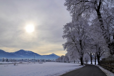 Canopy road in a beautiful winter landscape in the Bavarian Alps photo