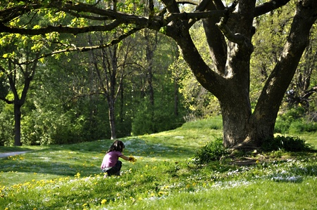Little girl picking flowers under a beautiful tree in spring