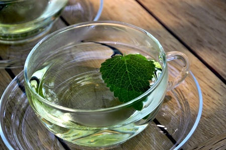 glass cup fille with lemon balm tea and a leaf Stock Photo - 9628957