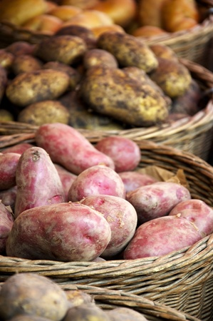 kinds: Different kinds of potato on a market