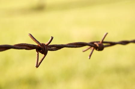 intentionally: Closeup of rusty barbed wire. Intentionally shallow depth of Field.