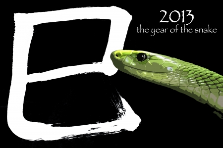 According to the Chinese zodiac, 2013 will be the year of the Snake  The chinese letter means SNAKE photo