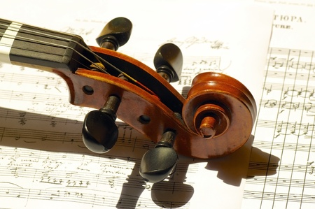 fiddle: Scroll, peg and part of neck of a beautiful violin