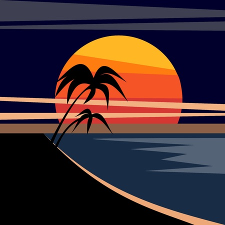 palm trees on the shore