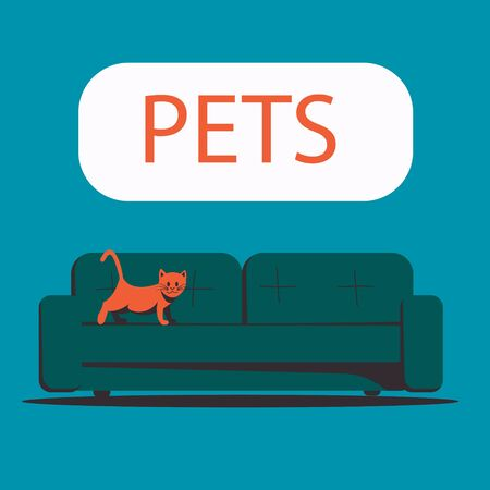 Kitten walking on the sofa. Pets. Flat vector illustration.