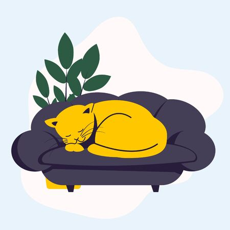 The yellow cat sleeping on the couch curled up in a ball. Pets.