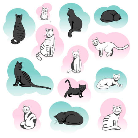 Different breeds of cats in different poses and different colors. Set of cats in a flat vector style. Illustration