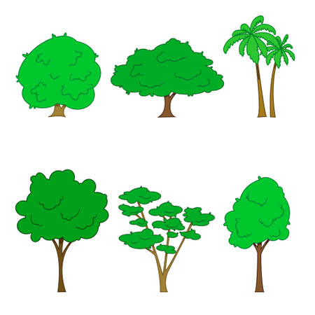 Set of different trees. Oak, aspen, alder, poplar, chestnut, palm. Vector illustration.
