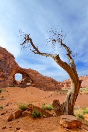 モニュメント バレー部族公園、ユタのアリゾナ風の耳