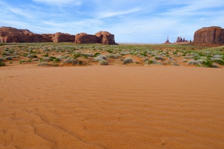 トーテム ポールと記念碑の谷の砂丘