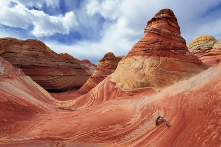 rock formation: The Wave, Rock Formation at North Coyote Buttes in Utah USA