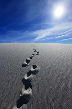 Footprints on Alkali Flat Trail in White Sands National Monument, New Mexico, USA. Stock Photo - 16871483