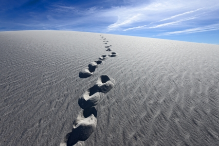 chihuahua desert:  Footprints on Alkali Flat Trail in White Sands National Monument, New Mexico, USA.