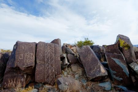 アメリカ合衆国ニュー メキシコ州のスリーリバーズ ペトログリフ サイトでペトログリフ。