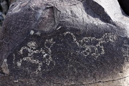 pintura rupestre: Petroglyph Petroglyph sitio en Tres ríos en Nuevo México, EE.UU.. Foto de archivo