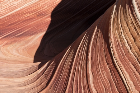 Close up view of a section of The Wave. Coyote butte north, Paria canyon, AZ. Stock Photo - 17336448