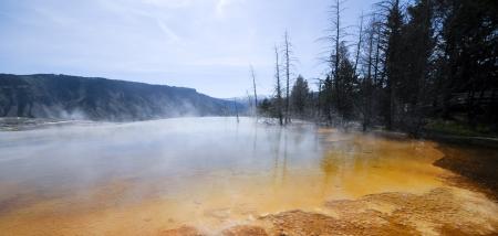 Mammoth Hot Springs, Yellowstone National Park photo