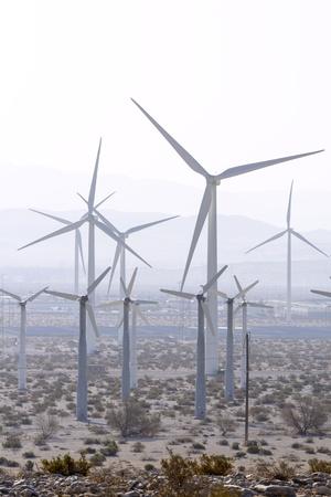 windfarm: Parque e�lico cerca de Palm Springs, California.
