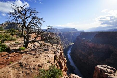 toroweap: Toroweap Overlook on the north rim of the Grand Canyon National Park, Arizona  Stock Photo