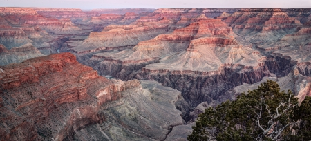 Hopi Point at Dawn, Grand Canyon National Park  photo