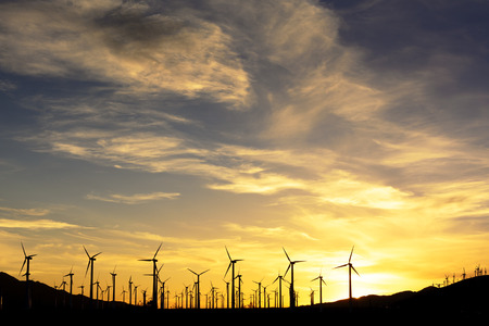 wind farm in silhouette at sunset photo