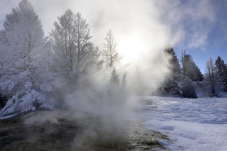 冬のイエローストーン マンモス ホット スプリング