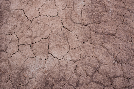 red soil: Cracked red soil texture