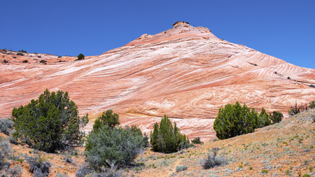escalante: White and red sandstone hills in Grand staircase escalante national monument, Utah. Stock Photo