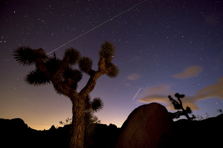 joshua tree national park: Meteor and  plane at night in Joshua Tree National Park. Stock Photo