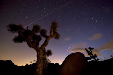 joshua: Meteor and  plane at night in Joshua Tree National Park. Stock Photo