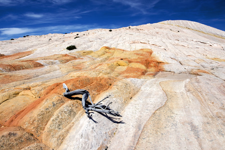 cottonwood canyon: Yellow Rock, Grand Staircase-Escalante National Monument, Utah Stock Photo
