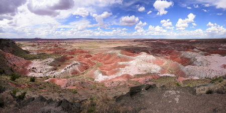 mudstone: Painted Desert vista in the northern unit of Petrified Forest National Park Arizona