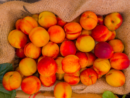 Juicy fruits called as Nectarine